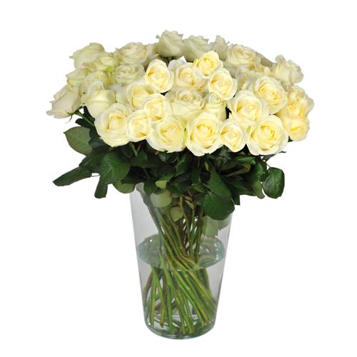 Très Composez votre bouquet de roses blanches sur mesure à tout petit prix KV31