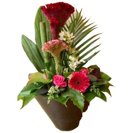 Offrez des fleurs