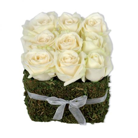 jardin de roses blanches