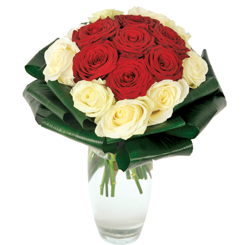 Bouquet roses rouges et blanches symbolise l 39 amour for Bouquets de roses