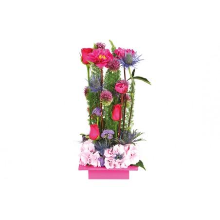 Livraison sur nancy et proximit gratuit chez la fleuriste for Livraison fleurs nancy