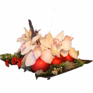 Noël et Orchidées – Composition Inès