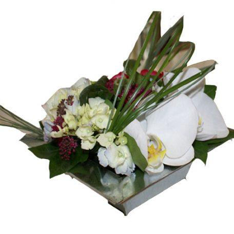 Composition avec phalaénospsis et fleurettes de saison